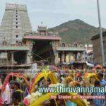 Tiruvannamalai Aadi Krithigai festival