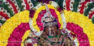 Lord natarajar Alangaram pics 2018