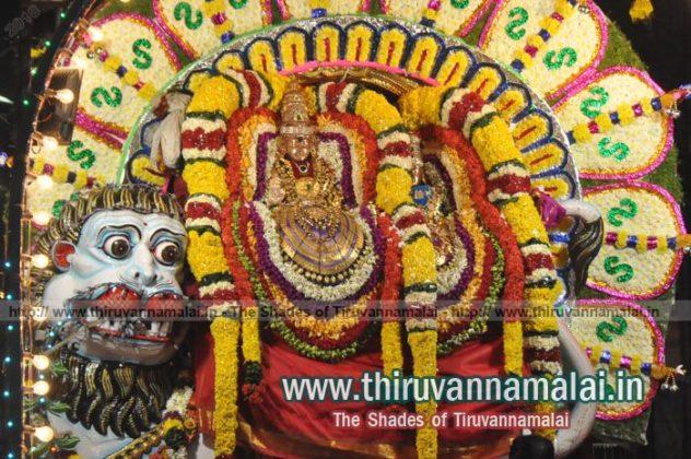 Karthigai Deepam Festival Day 3 Night Photogallery